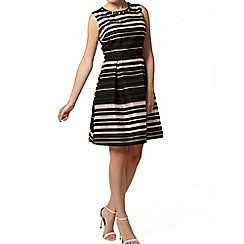 Dorothy Perkins - Organza stripe fit and flare dress