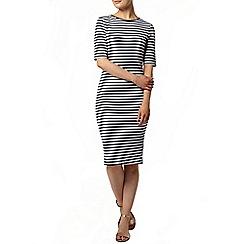 Dorothy Perkins - Stripe bodycon dress