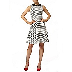 Dorothy Perkins - Stripe fit and flare dress with round contrast collar