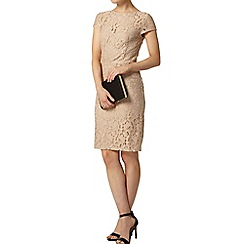 Dorothy Perkins - Stone lace pencil dress