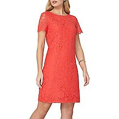 Dorothy Perkins - Coral lace shift dress