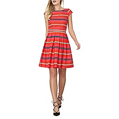 Dorothy Perkins - Stripe fit and flare dress