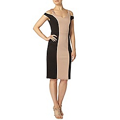 Dorothy Perkins - Colourblock cut out pencil dress