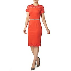 Dorothy Perkins - Coral daisy lace pencil dress