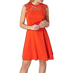 Dorothy Perkins - Red insert lace fit and flare dress