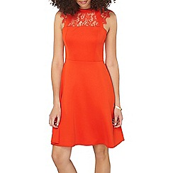 Dorothy Perkins - Tall red lace fit and flare dress