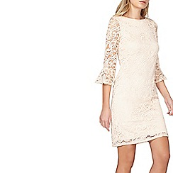 Dorothy Perkins - Blush lace fluted sleeve dress