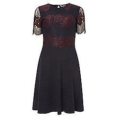 Dorothy Perkins - Tall navy and berry 2 tone lace skater dress