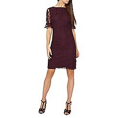 Dorothy Perkins - **tall berry lace flute sleeve shift dress