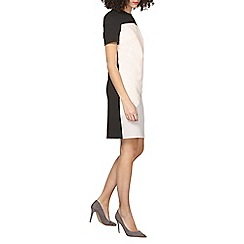 Dorothy Perkins - Tall colourblock shift dress