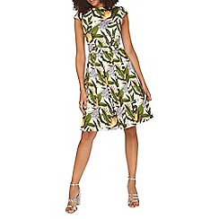 Dorothy Perkins - **tall tropical print fit & flare dress