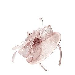 Dorothy Perkins - Blush disc flower fascinator