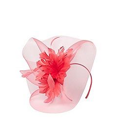 Dorothy Perkins - Coral flower fascinator