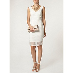 Dorothy Perkins - Luxe white sheer organza dress