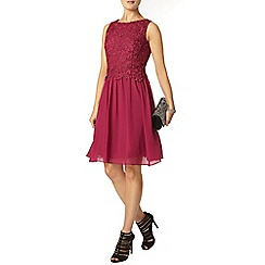 Dorothy Perkins - Showcase magenta lace prom dress