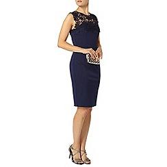 Dorothy Perkins - Showcase navy lace bodycon dress