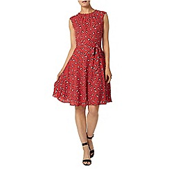 Dorothy Perkins - Billie and blossom red poppy print dress