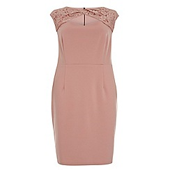 Dorothy Perkins - Showcase curve pink lace cutout bodycon dress