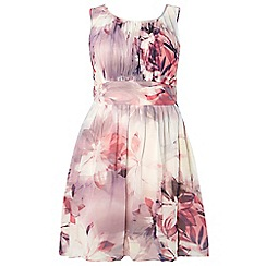 Dorothy Perkins - Showcase curve floral 'talia' prom dress
