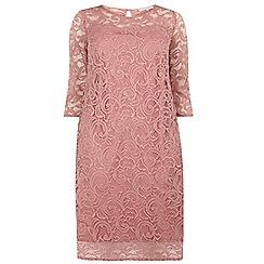 Dorothy Perkins - Billie curve pink lace shift dress