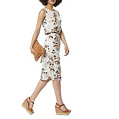 Dorothy Perkins - Billie and blossom floral notch neck midi dress
