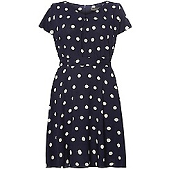 Dorothy Perkins - Billie curve navy spot dress