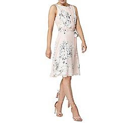 Dorothy Perkins - Billie and blossom blush floral pleated dress