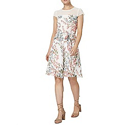 Dorothy Perkins - Billie and blossom white floral sheer dress