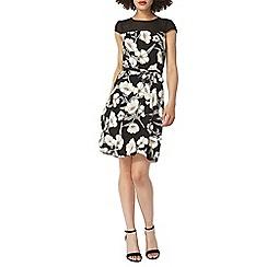Dorothy Perkins - Billie and blossom black floral sheer dress