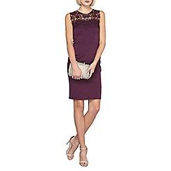 Dorothy Perkins - Showcase plum sophia dress