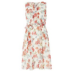 Dorothy Perkins - Billie and blossom ivory butterfly dress