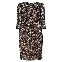 Dorothy Perkins - Dp curve black lace dress