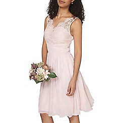 Dorothy Perkins - Showcase blush josie prom dress