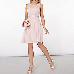 Dorothy Perkins - Showcase blush beth prom dress