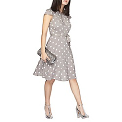 Dorothy Perkins - Grey billie and blossom petite spot dress