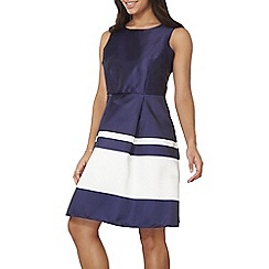 Dorothy Perkins - Luxe navy stripe dress