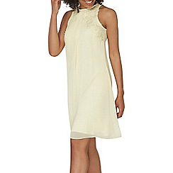 Dorothy Perkins - Showcase lily trapeze dress
