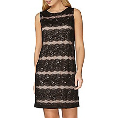 Dorothy Perkins - Billie black label black and nude lace shift dress
