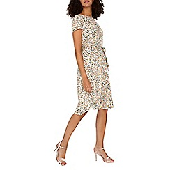 Dorothy Perkins - **Billie and blossom tall Multicoloured ditsy dress