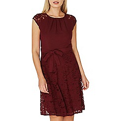 Dorothy Perkins - **billie & blossom mulberry red lace skater dress