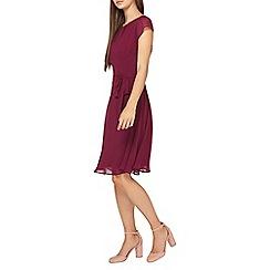 Dorothy Perkins - **Billie & Blossom tall mulberry chiffon skater dress