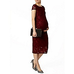 Dorothy Perkins - Maternity wine lace pencil dress