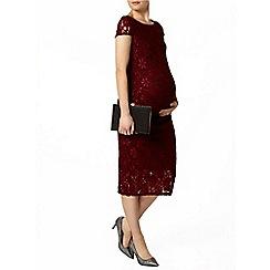 Dorothy Perkins - Maternity wine lace pencil dress