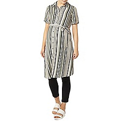 Dorothy Perkins - Maternity khaki stripe short shirt dress