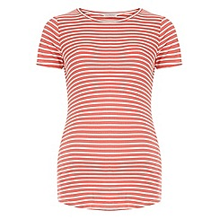 Dorothy Perkins - Maternity coral and white stripe ribbed top