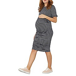 Dorothy Perkins - **maternity navy frill sleeves stripe bodycon dress