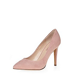 Dorothy Perkins - Rose emily point courts