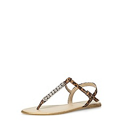 Dorothy Perkins - Leopard t-bar flat sandals