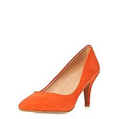 Dorothy Perkins - Orange dream mid courts