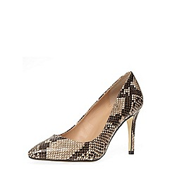 Dorothy Perkins - Natural snake mid height court shoes